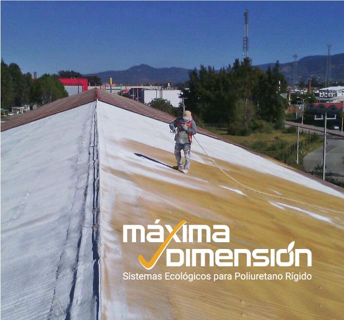 maxima dimension